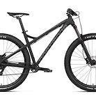 2019 Dartmoor Primal Intro 29 Bike