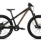 2019 Dartmoor Hornet Junior Bike