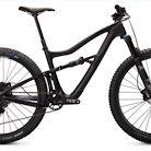 2020 Ibis Ripley NX Bike