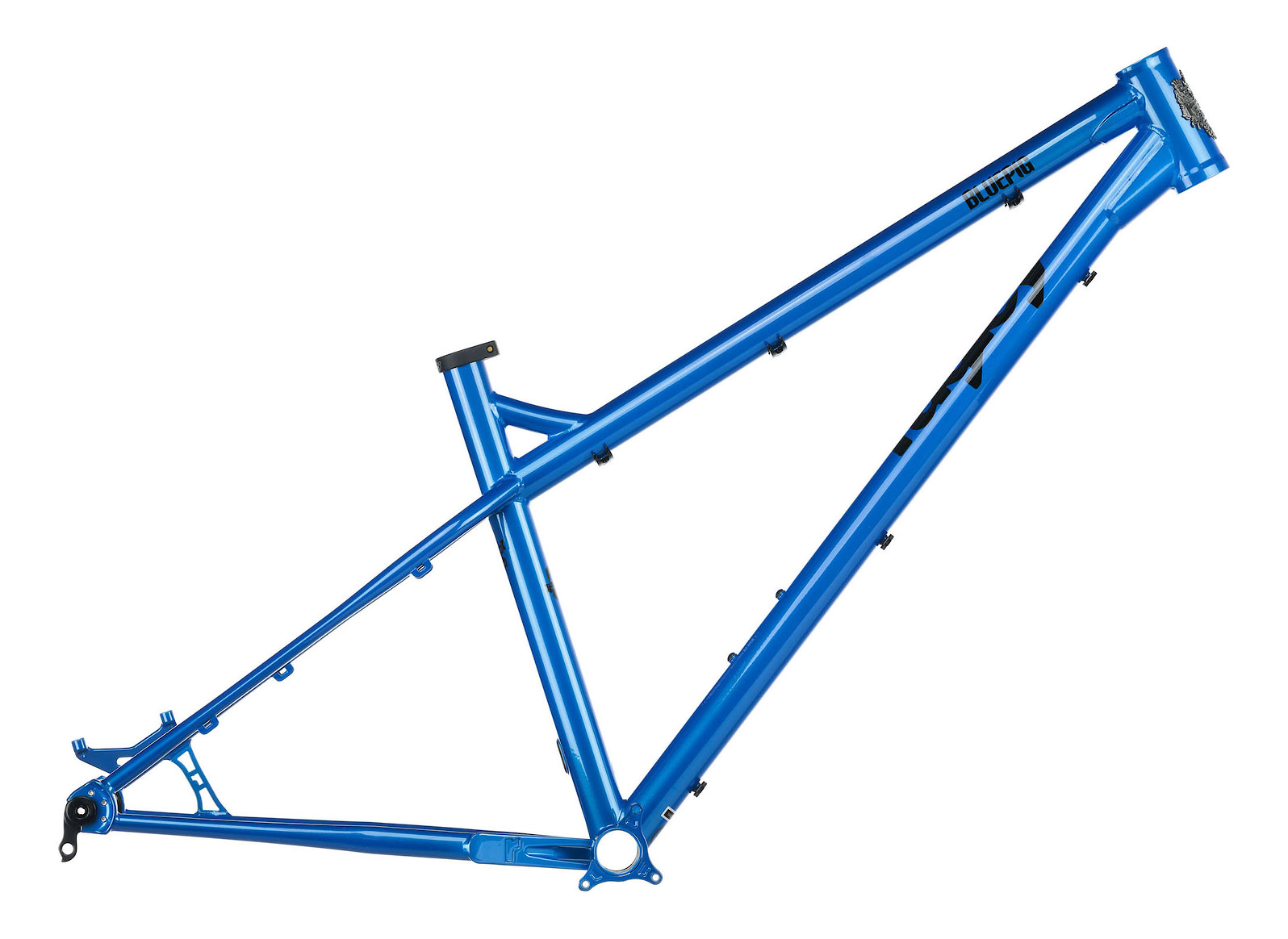 Ragley Blue Pig Frame (Electric Blue)