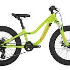 2019 Salsa Timberjack Kids 20 SUS Bike