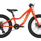 2019 Salsa Timberjack Kids 20 Bike