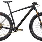 2020 Specialized Epic Hardtail S-Works Ultralight Bike