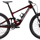 2020 Specialized Enduro Expert Bike
