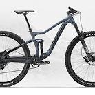 2020 Devinci Django 29 SX/NX Bike