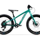 2020 Propain Dreckspatz Bike