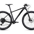 2020 Radon Jealous AL 9.0 Bike