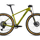 2020 Radon Jealous CF 10.0 Bike