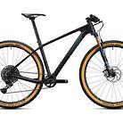 2020 Radon Jealous CF 9.0 Bike