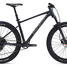 2020 Giant Fathom 2 Bike
