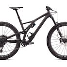 2020 Specialized Stumpjumper EVO Pro 29 Bike