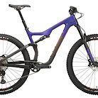 2020 Salsa Horsethief Carbon SLX Bike