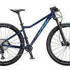 2020 KTM Ultra Glory Bike