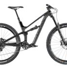 2020 Canyon Spectral WMN CF 7.0 Bike