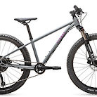 "2020 Cleary Scout 24"" Bike"