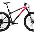 2020 Ragley Piglet Bike