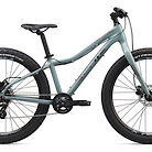 2020 Giant XTC Jr. 26+ Bike