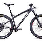 2020 Bird Zero 29 SRAM Eagle Bike