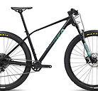 2021 Orbea Alma H10 Eagle Bike