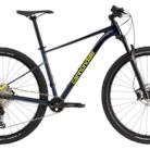 2021 Cannondale Trail SL 2 Bike