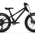 2021 Rocky Mountain Vertex Jr 20 Bike