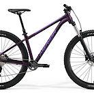 2021 Merida Big.Trail 400 Bike