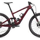 2021 Specialized Enduro Expert Bike