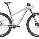 2021 Salsa Timberjack Single Speed 29 Bike