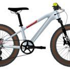 2021 Patrol C020 Bike