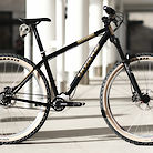 2021 REEB Dikyelous2 Pinion Premium Bike