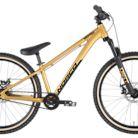 2021 Norco Rampage 2 24 Bike