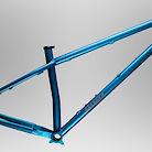 2021 Bird Forge Shimano 12-speed Bike