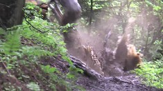 Get Down, Get Dirty   Nukeproof Crew in Morzine