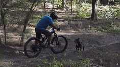 C235x132_worst_trail_dog