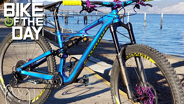 C366x206_specialized_enduro_s_works_purple_spot