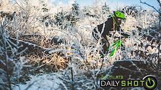 C235x132_winter_wonderland_spot