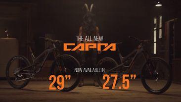 C366x206_new_capra