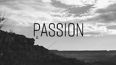Rogatkin, Reed, Nell Star in Passion Movie