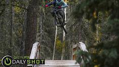 Bridging the Gap - Daily Shot