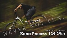 Never Not Fun: The All-New Kona Process 134 29