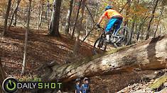 Log Ride - Daily Shot