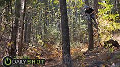 Stump Sending - Daily Shot