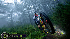 Fun with Fog - Daily Shot