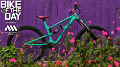 Bike of the Day: Zerode Katipo with Trust Shout