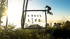 Brendan Fairclough Rips Up Madeira in Episode One of 'A Dog's Life'