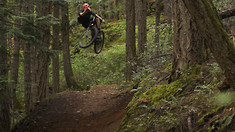 Pure and Simple Shredding to the Sounds of the Forrest