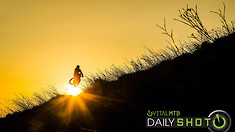 Sunset Silhouette - Daily Shot
