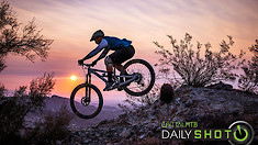 Early Bird - Daily Shot