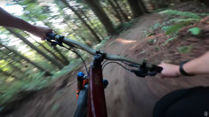 Hang On and Think Fast! Jill Kintner Flies Through the Chuckanut Mtn Trees
