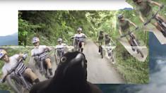 Marcelo Gutierrez Schools Us on the Colombian Coffee Zone - Episode 2